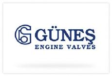logo_gunes